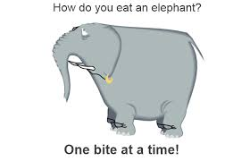 Elephant One Bite at a time